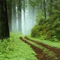 Il bello di perdersi … è di poter ritrovare la strada …