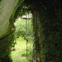 Scoprire il proprio giardino segreto ... un esercizio