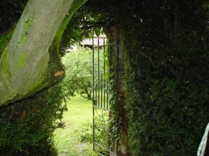 giardino segreto 1