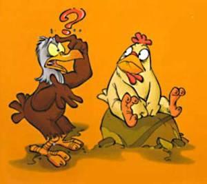 aquila e gallina