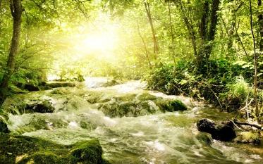 fiume che scorre